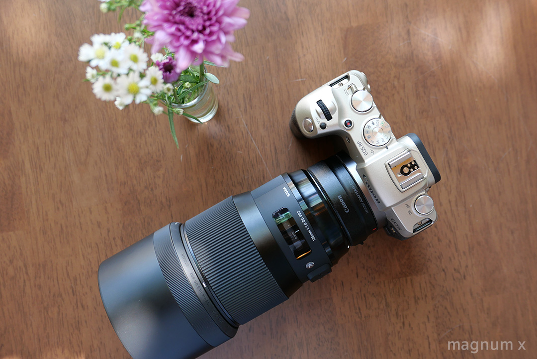 review-sigma-135mm-f14-art-16
