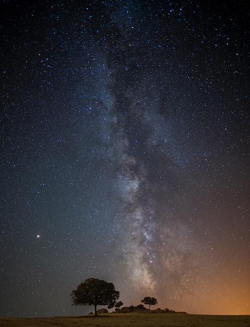 Vía Láctea / Milky Way