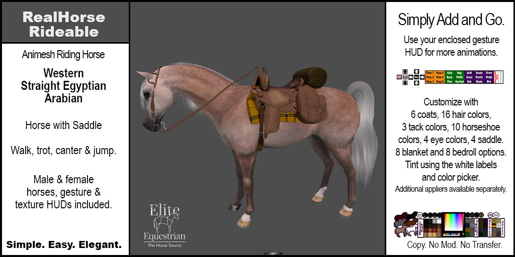 Elite Equestrian Animesh RealHorse Rideable Straight Egyptian Arabian Western Style