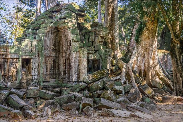 Ta Prohm, Angkor area, Cambodia