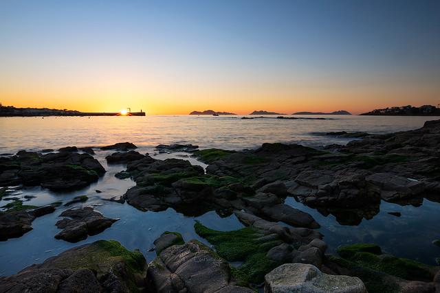 Sunset, Canido