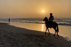 Kololi beach, Gambia