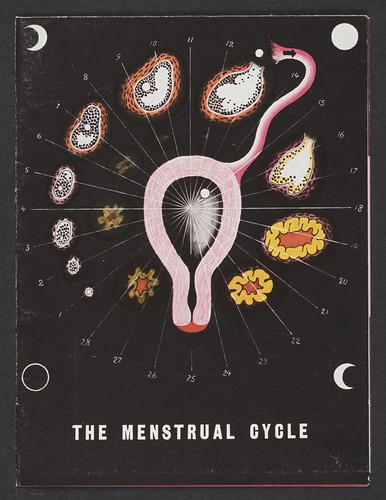 Brochure, The Menstrual Cycle, 1939; Designed by Herbert Bayer
