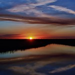 4. Detsember 2019 - 19:46 - I guess I should finish up this amazing South Florida  Everglades sunset from last month that was one of the  best sunsets of the year IMHO, with incredibly changing  light and colors from minute to minute. I really enjoyed it  and I do love sharing it with you. Thank you for looking.   SUNSET ~ Florida Everglades U.S.A.  Loxahatchee National Wildlife Refuge Autumn/Fall ~ Boynton Beach, FL ~ 12/4/19 South Florida ~ Palm Beach County, Florida  en.wikipedia.org/wiki/Everglades