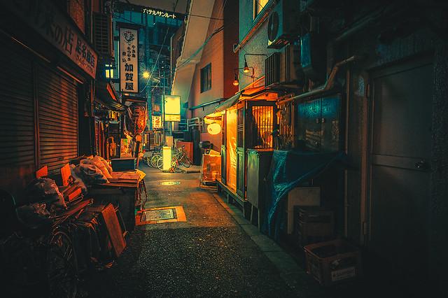 Our Surroundings III - Tokyo Japan