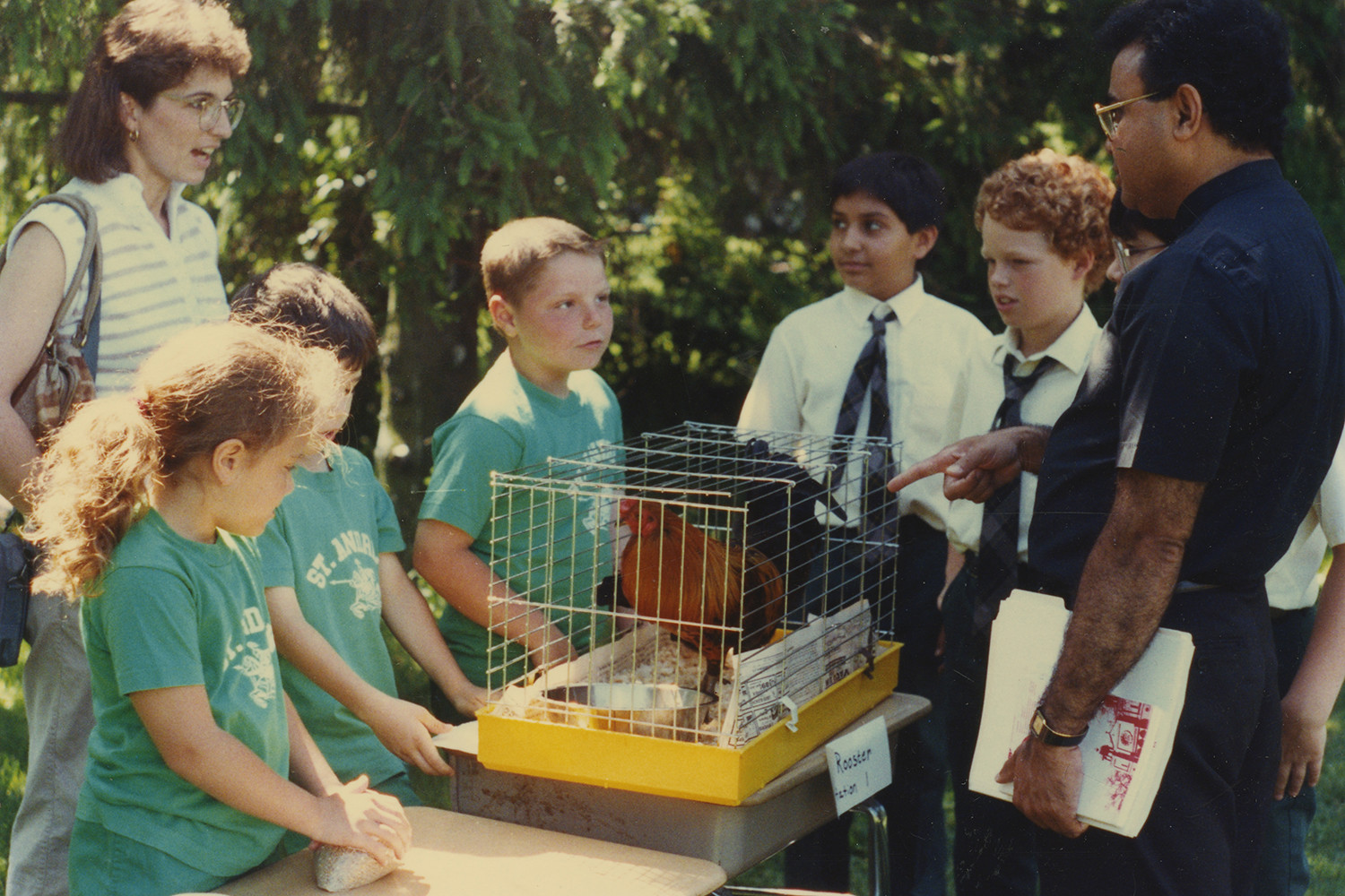 A group of children around a caged chicken.