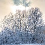 Uppsala, December 29, 2014