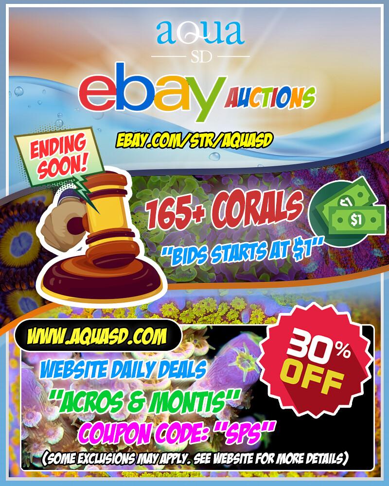 49430979302_c9886db2be_b.jpg