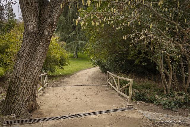 Parque delOeste. Madrid.