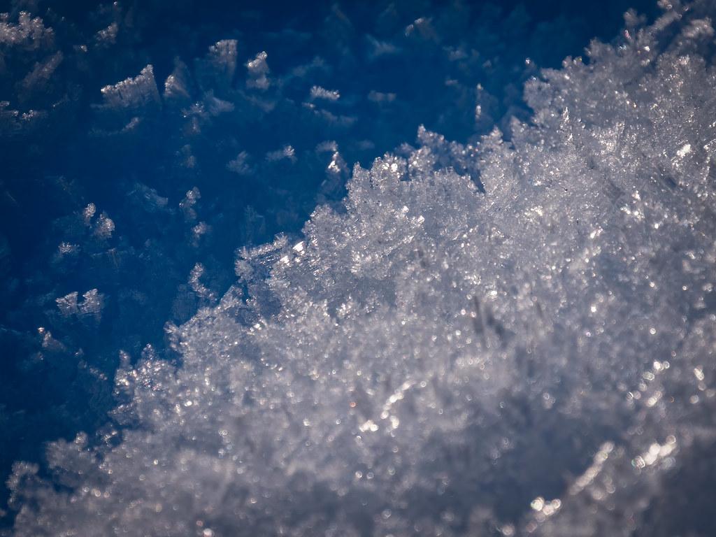Neige glacée... 49431235133_95aa0808f1_b