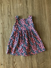 Oliver + S Garden Party Dress