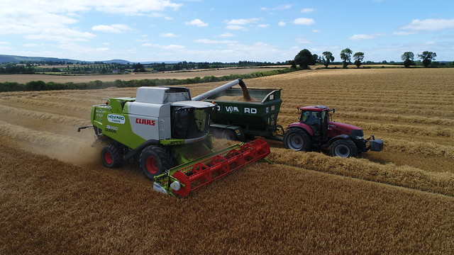 Claas Lexion 650 Combine Harvester unloading Winter Barley to a Richard Weston FR16 Chaser Bin drawn by a Case IH Puma 225 Tractor