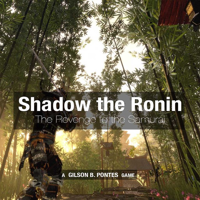 Shadow the Ronin