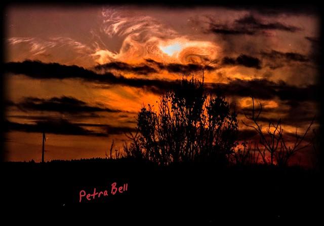 Evening landscape shot 🌇