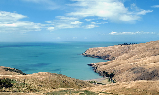 Harris Bay  Banks Peninsula. NZ