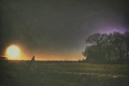 sunrise path field farm crops arable winter season weather magdalenlaver essex