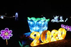 Chinese Light Festival, Warsaw, Poland