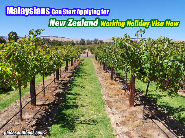 nz working holiday visa