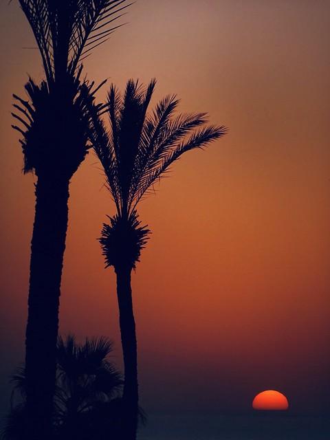 sundown in jaffa