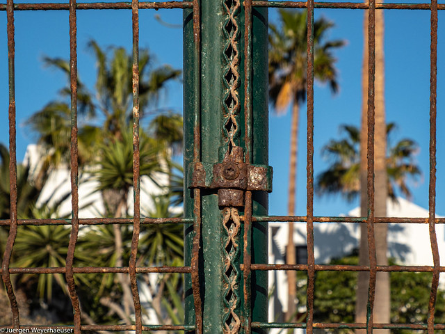 HFF - Fenced Friday
