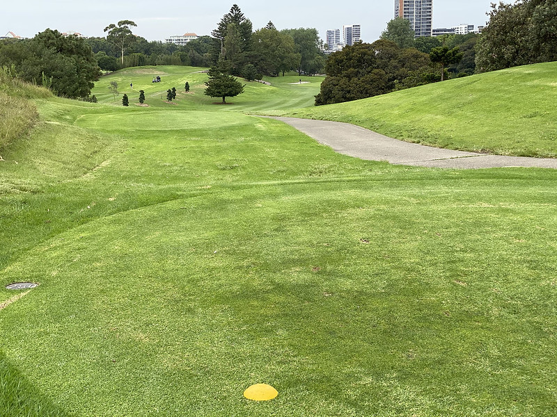 Hole 17, Moore Park