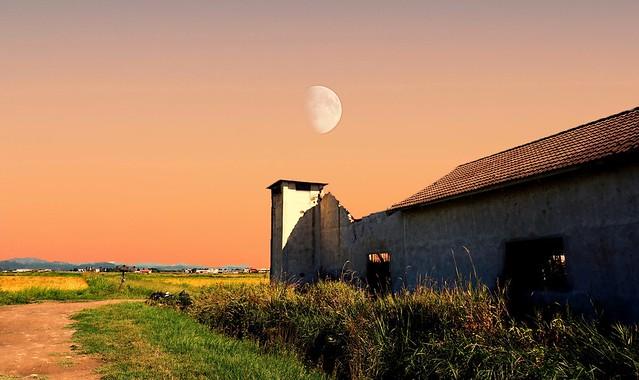 Moon at dawn