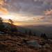 Roan Valley Sunrise