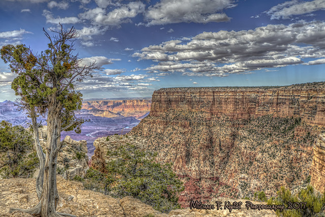 Open Spaces in the Canyon