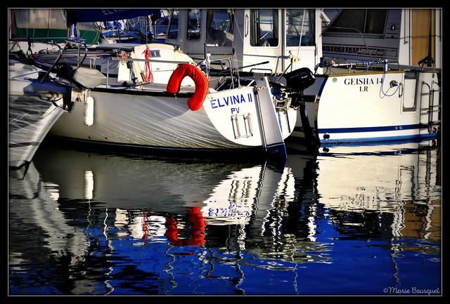 Elvina et Geisha sont sur un bateau...