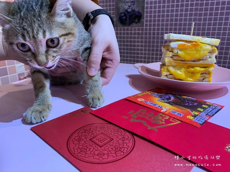 中盟動物醫院,中盟動物醫院評價,貓咪癱瘓 @陳小可的吃喝玩樂