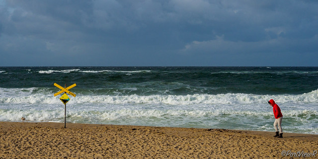Walking in stormy weather - Westerland, Sylt, Germany
