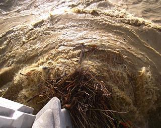 Perpignan Tet river flooding from Joffre bridge Gloria storm