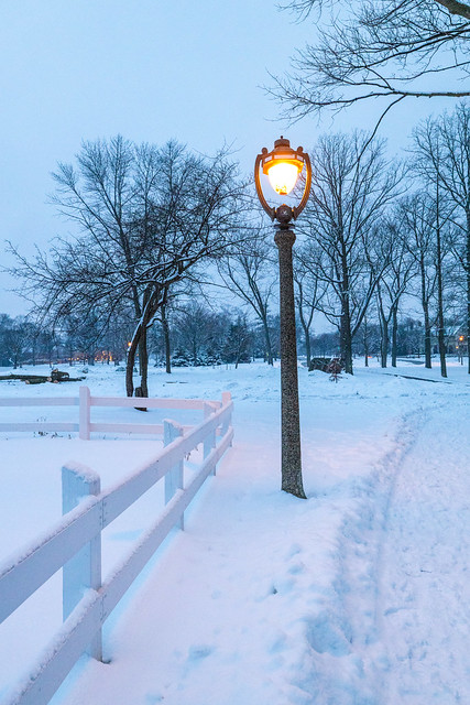 White Fence Snow (Lake Park Lawn Bowling Field)