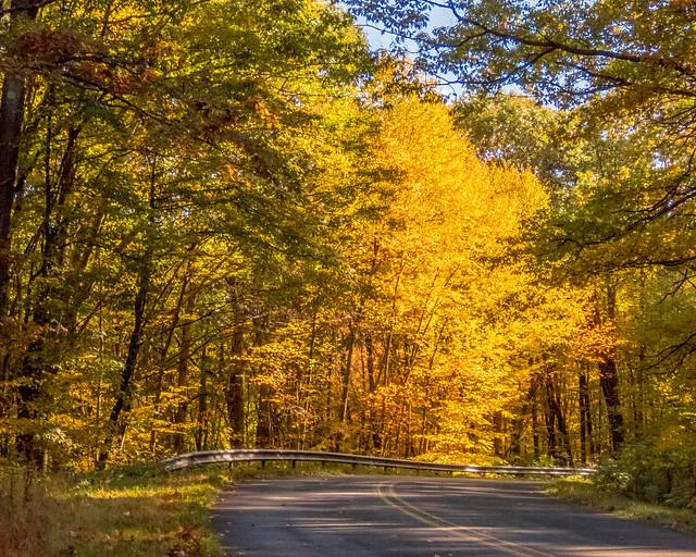 Pennsylvania Fall