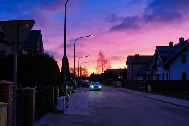 Suburbian street at dawn
