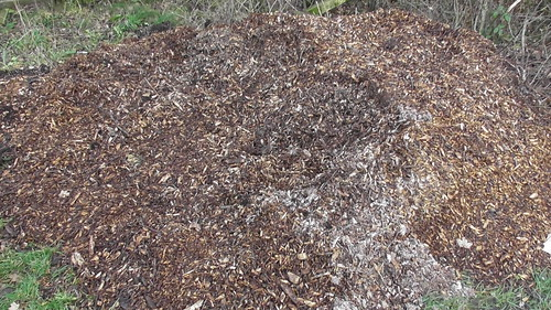 wood chip flytipped Jan 20 (1)