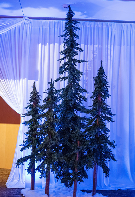 Apptio Holiday 2020 (Lighting by Crimson Haze Event Lighting. Photo by Barbie Hull Photography)