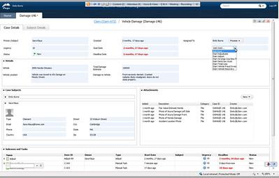 Pega Case Management - case details