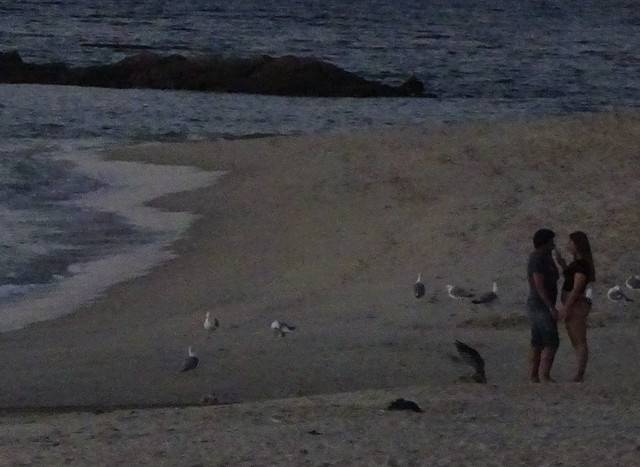 Speak by the evening sea