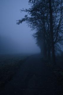 walking_a_dark_road