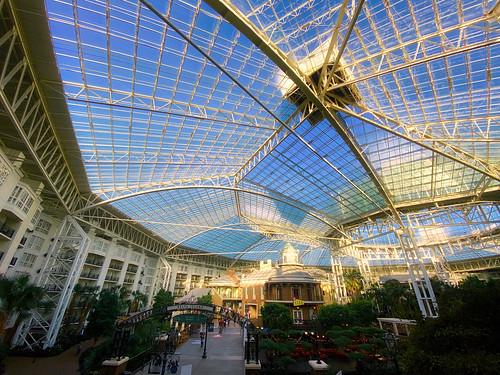 atrium deltaisland gaylordopryland hotel imagingusa interior nashville resort shotoniphone shotoniphone11pro skylight sunrise tennessee terrarium