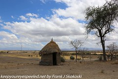 Tanzania Day seven drive to Tarangire  (26 of 32)
