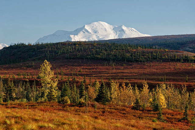 Alpenglow (Denali National Park & Preserve)