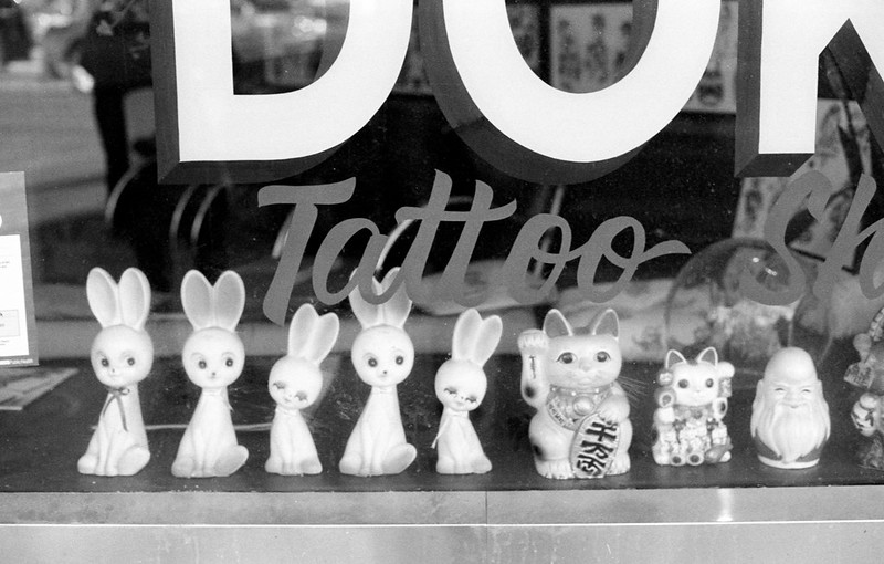 Bunnies and Kittens at the Tattoo Parlour Window