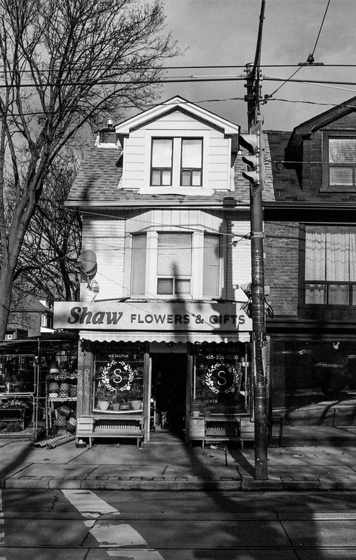 Shaw Flowers One