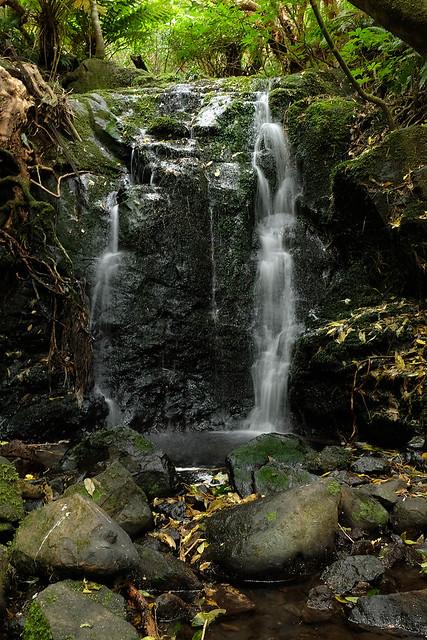 Waterfall at Hinewai Reserve