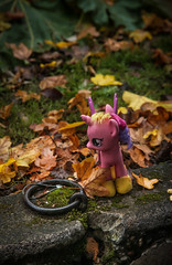 Little Pony in the Rain with Hitching Ring
