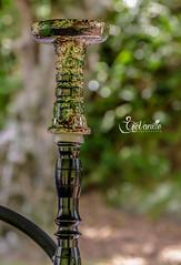 Cascada K-MU  #gio_vanille #gd_pix_photographie #reunionisland #hookah #chicha #smoke #camouflage #green #foyer