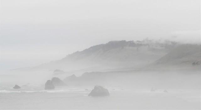 Foggy California Coast