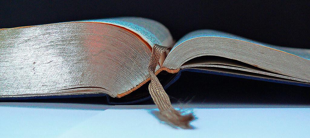 DOMINGO III, T.O. – A – Domingo de la Palabra de Dios
